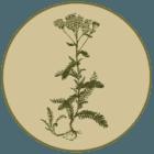 Naturheilpraxis Laucken Logo