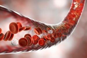 Naturheilpraxis Laucken Diagnostik Dunkelfeld Mikroskopie